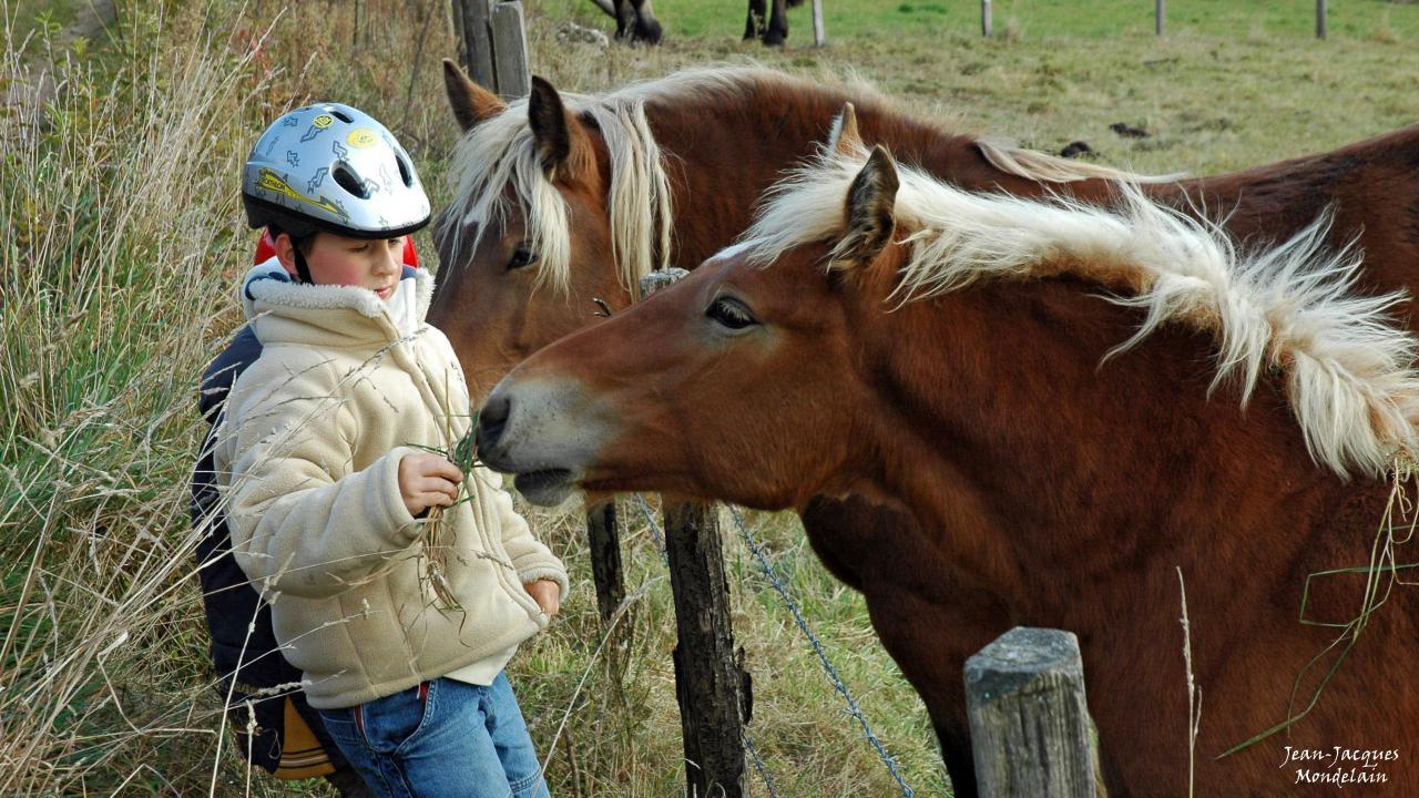 Enfants aux chevaux