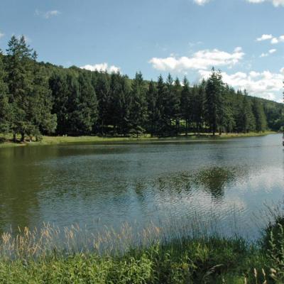 Le lac de la Gimond avre de paix